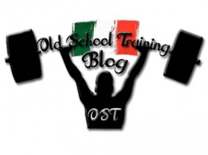 Logo OST Blog