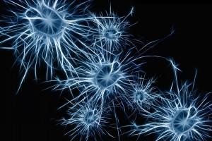Neuroni. Forza